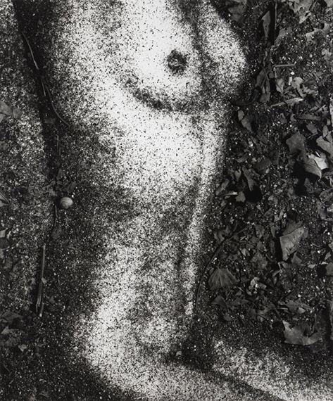 Lot 29