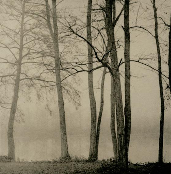 """""""Les étangs de Grez"""", 2020 © Isa Marcelli"""