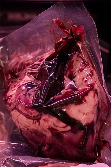 Elena Aya Bundurakis - Heart, from the series 'Eating Magma' (2017)