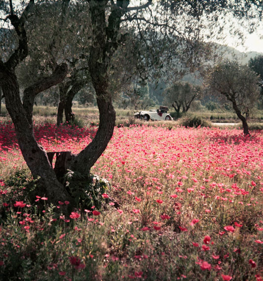Jacques-Henri Lartigue:  Florette im Morgan, Provence, Frankreich, 1954