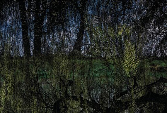 © Didier Goupy