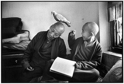 Shechen Monastery, Bodnath, Nepal 1996 @Martine Franck Magnum Photos