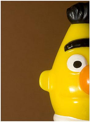 Bert 2008