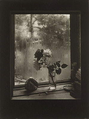Josef SudekThe Last Rose, from the Rose series, 1956© Museum of Decorative Arts in Prague