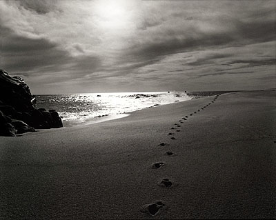 © RUSSELL JAMES, FOOTPRINTS ON THE SAND, CABO SAN LUCAS, MEXICO