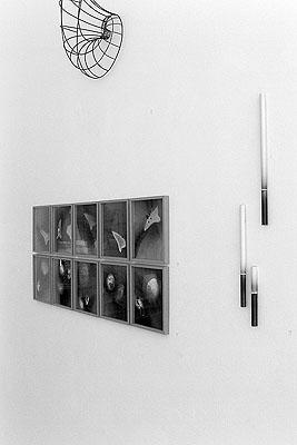 Installationansicht: Klaus Küster - Plastisches Werk - Fotoarbeiten