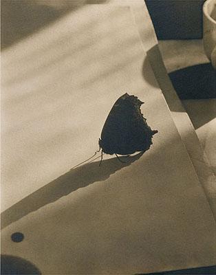 Edward SteichenDiagram of Doom-2, ca. 1922Vintage palladium print25.2 x 20.2 cmTitled, dated, and annotated in pencil on versoCourtesy Galerie Zur Stockeregg, Zurich