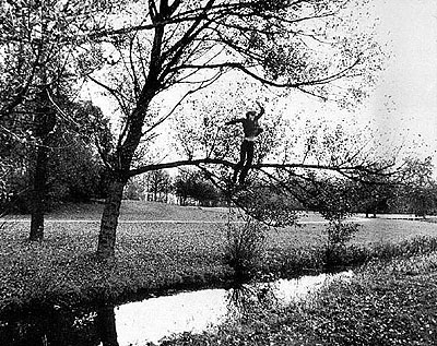 Bas Jan AderBroken Fall (organic), film. Amsterdamse Bos-Holland (1971)