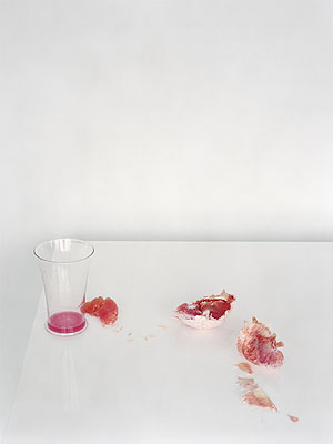 Untitled #2, 2009from the series Fall72 x 90 cm, Ed. 9© Laura Letinsky, Courtesy Brancolini Grimaldi, Rome