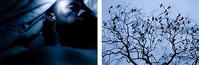 René Becker Ohne Titel 3 +4, Diptychon (silent all these years)c-print, gerahmt, 13 x 18cm2007Auflage 1 von 7