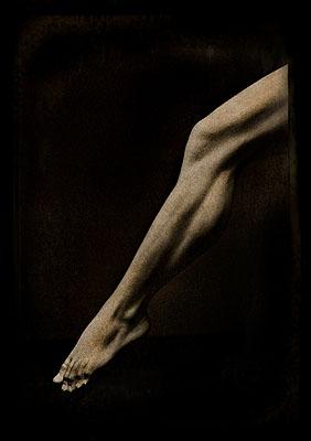 Bruno Cattani | Eros