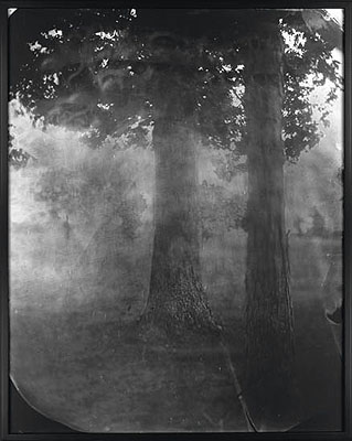 Sally Mann, Untitled (Antietam #16), oversized silver print, printed by Mann from the original wet-plate collodion negative; archivally drymounted and finished with custom mixed Soluvar varnish, 2000-2002. Estimate: $20,000 to $30,000.