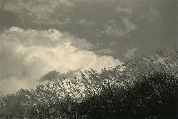 #1500 from Kawa series© Masao Yamamoto