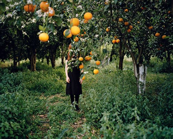 Anni Leppälä, Orange tree, 2008