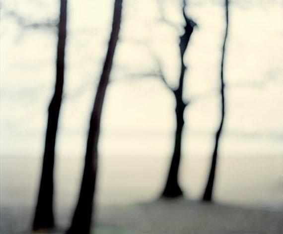 © Sandra Kantanen