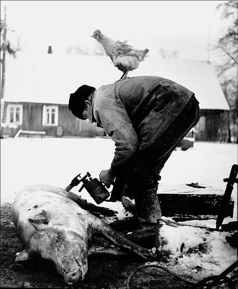 Rimaldas Viksraitis. Grimaces of the Wearu Village. 1982
