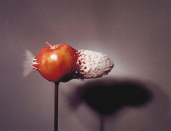 """Lot 1037 Harold E. Edgerton (1903 Fremont/Nebraska - 1990 Boston)""""Accelerator Bullet Hits Apple"""". 1978. Vintage. C-Print von ca. 1980. Kodak-Papier. Eines von  2 existierenden Exemplaren dieser Größe. 34,4 x 44,8cmSchätzpreis: $ 5.560 / € 4.000"""