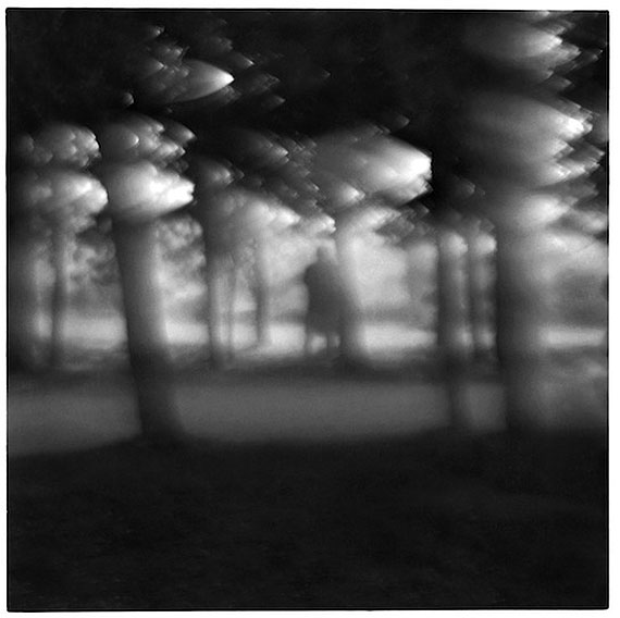© Frank Dituri, Man in the forest 2002