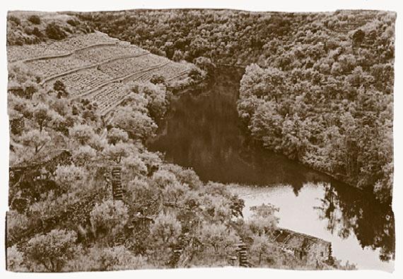 Quinta do Panascal, 2008