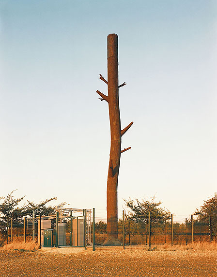 Robert Voit, Hundon, Haverhill, Great Britain, 2004, from the series: New Trees, C-print © Münchner Stadtmuseum und Robert Voit