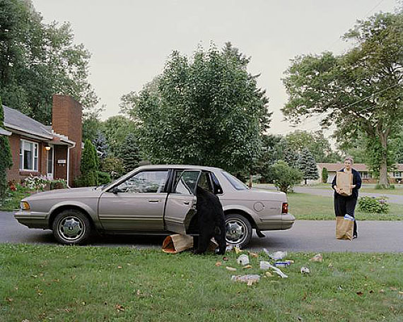Groceries, 2007 / 2008 © Amy Stein, Courtesy Robert Koch Gallery, San Francisco