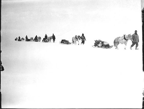 Ponies on the march, Great Ice Barrier, 2 Dec 1911 © Richard Kossow, courtesy of ATLAS Gallery