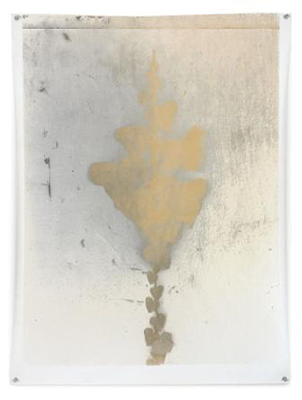 Nature Morte 9, 81 x 61 cm, Silver Print, 2010. Edition of 1© Jeff Cowen