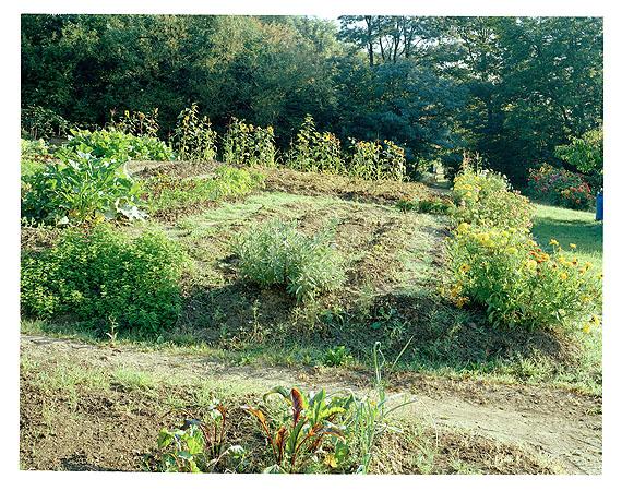 Gemüsebeet mit Blumeneinfassung, Cravanche, Territoire de Belfort 2004© Simone Nieweg