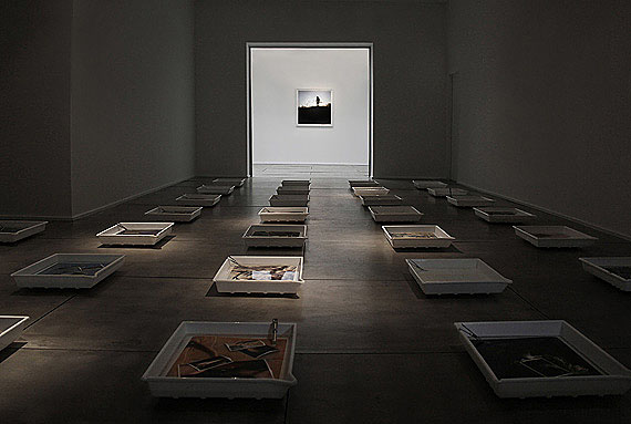 Installationshot (40 trays, 40 tongues, approx. 100 photographs under water), courtesy of the artist