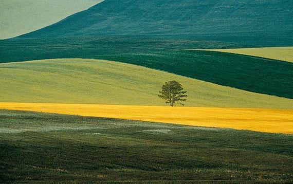 © Franco Fontana. Basilicata, 1978