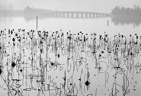 Former Summer Palace, Dead Lotus Flowers on the Kunming Lake, Beijing, China, 1964 © René Burri / Magnum Photos