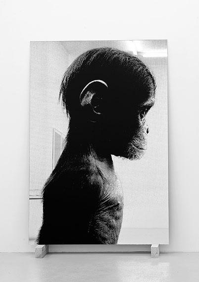 Pietro Mattioli, o.T. (Portrait des Künstlers als junger Affe), 2010, Siebdruck auf Spiegelglas auf Holzsockel, 233 x 150 cm, Unikat