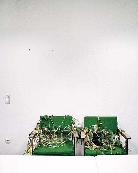 Stefan Koch  |  Personalverwaltung Hornschuchpromenade - Zwei Besucherstühle mit vertrockneter Zimmerpflanze