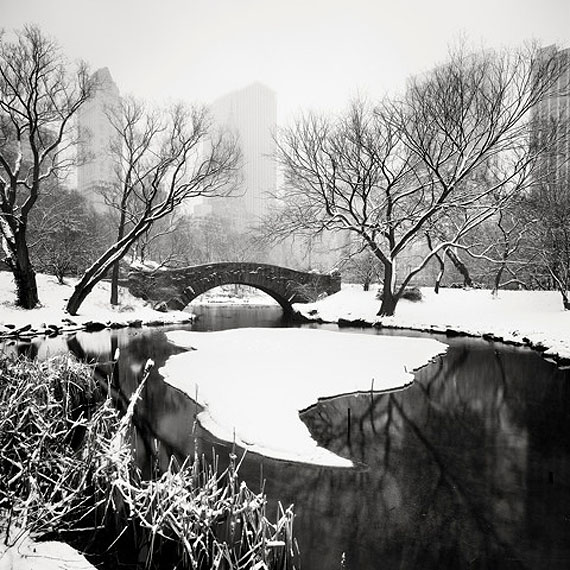Snow Capped Central Park Study 1, 2011 © Josef Hoflehner