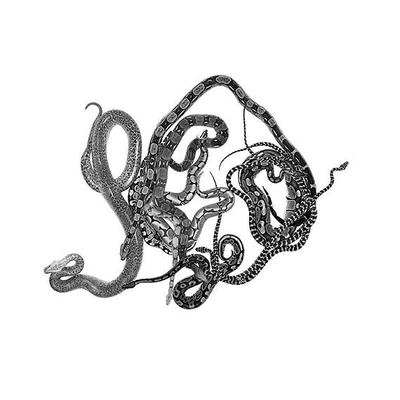 """""""Schlangenmosaik II"""", 2012Silbergelatineabzug auf Barytpapier, § 131,5 cm"""