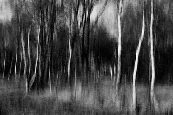 © Burkhard Schittny:BRE_18_0844