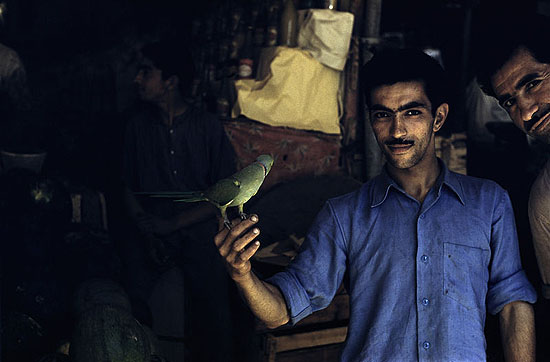 Man With Bird, 1956 by Inge Morath , © Courtesy of The Inge Morath Foundation and Magnum Gallery, Paris