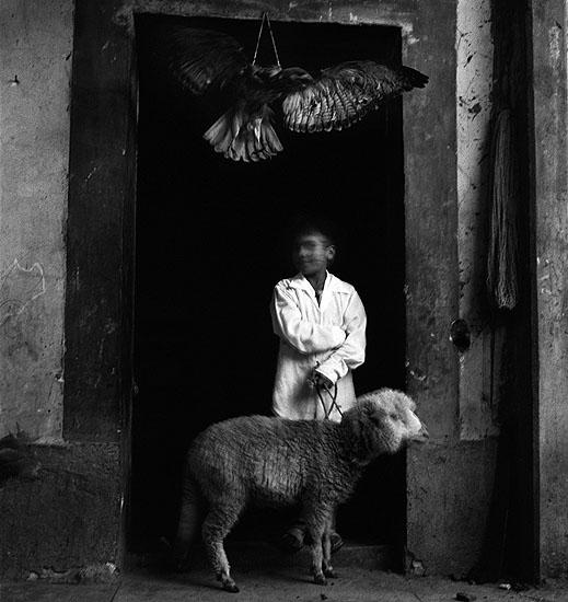 "© Debbie Fleming Caffery. ""Boy and lamb, Mexico, 1994."""