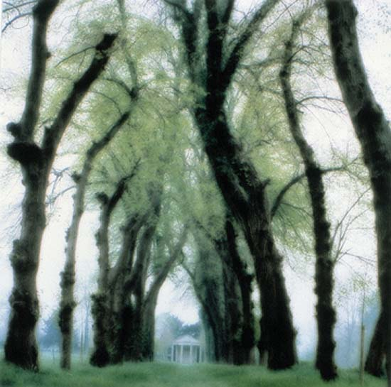 Parc de Canon, France, 1995 