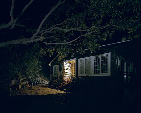 gerald förster, nocturnal #3, 2006, chromogenic prints on Kodak Ultra Endura paper, available in 48 x 60 inches, ed. of 6 and 20 x 25 inches, ed. of 9