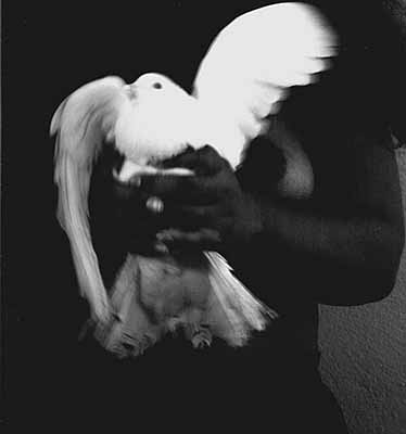 Irma with dove, Mexico, 2000	
