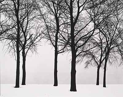 Harry Callahan, Chicago, 1950. 