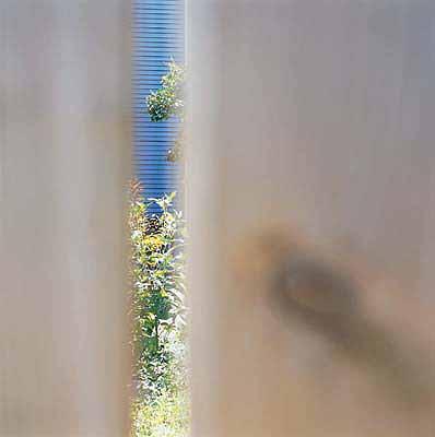 Lisa Klapstock4* Garnet Avenue2001-2002C-print, 17.5 x 17.5 inches