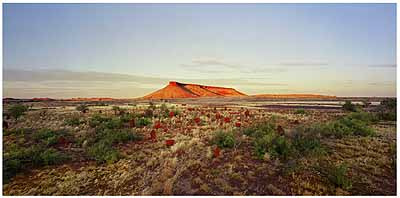 ROSEMARY LAING: One Dozen Unnatural Disasters in the Australian Landscape, Brumby Mound #6, 2003