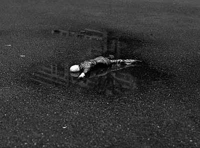 © Diana Scherer