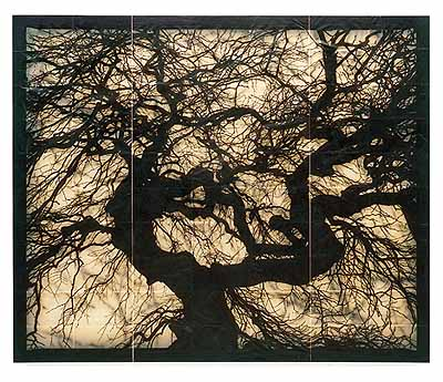 Doug & Mike Starn, Structure of Thought 15, 2001-2005