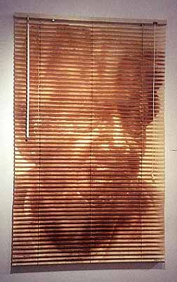 Graciela Sacco, Portrait no. 3, 2001. Heliography printed on plastic Venetian blind. Copyright the artist, courtesy of the Stephen Cohen Gallery.