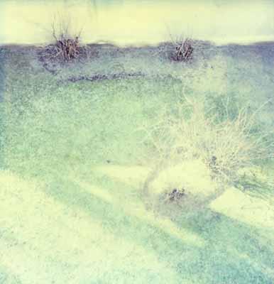 Knut Wolfgang Maron Hölderlin, aus: Bilder über Landschaften 100 x 102 cm, Ilfochrom