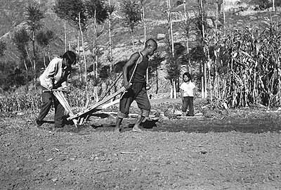 Untitled, 1978-79 ©Liu Xiaodi A family tills their field without the assistance of draft animals. Prior to 1976, almost 75% of China's population and the majority of the country's poor, made their livelihoods farming the land.