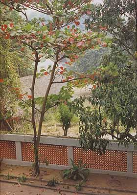 Tami-Nadu, South-India, 2001